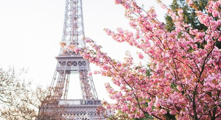 EDF Paris : vous cherchez à contacter un conseiller EDF à Paris ?
